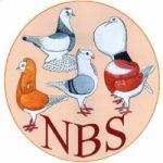 Nederlandse Bond voor Sierduivenliefhebbersverenigingen