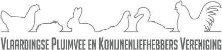 Ledenvergadering augustus 2020 @ Bethelkerk | Vlaardingen | Zuid-Holland | Nederland