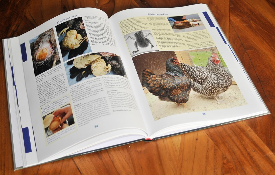 Nieuw boek Kippenziekten & Aandoeningen