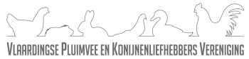 Bestuursvergadering juli 2020 @ Bethelkerk | Vlaardingen | Zuid-Holland | Nederland